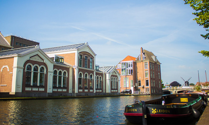 Webster University Leiden Campus