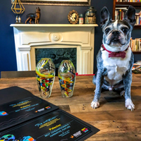 """The dog Ingebar celebrates awards for """"Palacios"""""""