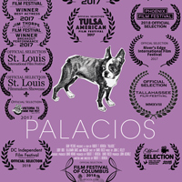 Professor's 'Palacios' Winning Film Awards Across the U.S.