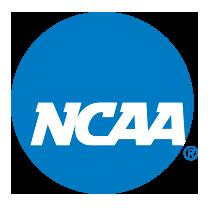 Webster to Host 2017 NCAA Baseball Championships