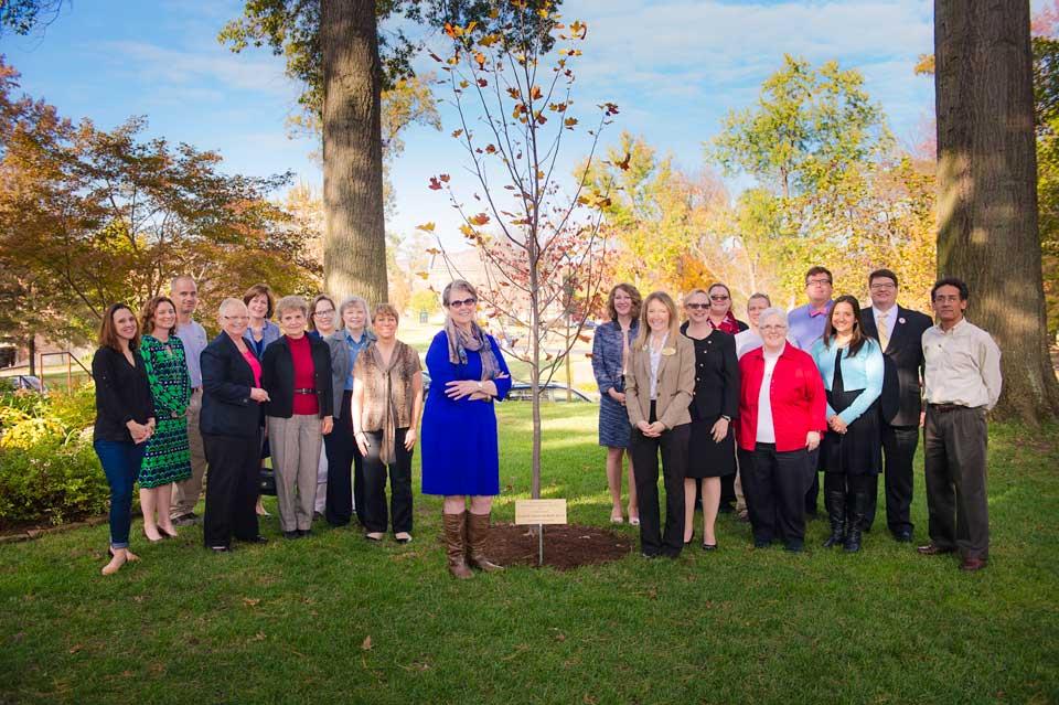 Robb Centennial Tree