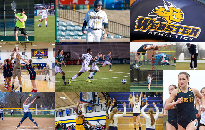 Webster Athletics Excellence